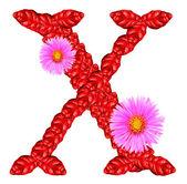 Brief x uit rode bladeren en bloemen van de aster — Stockfoto