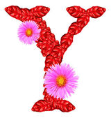 Letter Y from red leaves and aster flowers — Stock Photo