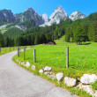 Way in alpine landscape. — Stock Photo #33441909