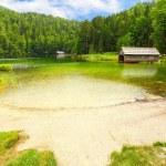 The Toplitzsee. Alpine lake in a Salzkammergut, Austria — Stock Photo #33442109