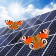 Solar energy panels against sunny sky. — Stock Photo #33444935