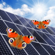 Solar energy panels against sunny sky. — Stock Photo #33445443