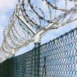 Fence with a barbed wire — Stock Photo #33448223
