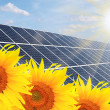 Solar energy panels on a sunflower field — Stockfoto