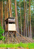 Outpost in the forest — Stock Photo