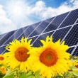 Solar power station and sunflowers. Pure energy concept. — Stock Photo