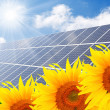 Solar energy panels on a sunflower field — Foto Stock