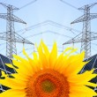 Solar energy panels on sunflower field — Stock Photo #33450143
