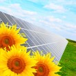 Solar energy panels on a sunflower field — Stok fotoğraf