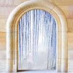 Opened door to arctic winter — Stock Photo #33450801