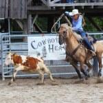 Unidentified Cowboy — Stock Photo