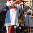 Foto Stock: Folklore Ensemble Usmev