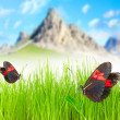 Stock Photo: Mountain meadow with two butterfly.