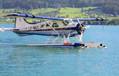 The de Havilland Canada DHC-2 Beaver — Stock Photo