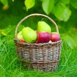 Red apples and green pears in the basket — Stock Photo #33714991