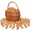 Walnuts in a basket. — Stock Photo
