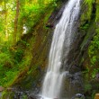 Beautiful waterfall in green forest.  — Stock Photo