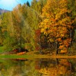 Colored Autumn in beautiful Czech National Park Sumava - Europe — Stock Photo