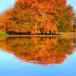 Color autumn in a mountain lake. — Stock Photo