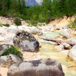 Alpine mountain river in the Dolomites - Italy - Europe — Stock Photo #33791005