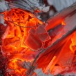 Burning paper waste — Foto de Stock