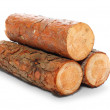 Cut log fire wood from Common Alder tree — Stock Photo #33797781