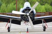 Orso di formazione americano storico aereo t28 trojan aria — Foto Stock