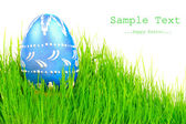 Easter egg in fresh spring grass — Stock Photo