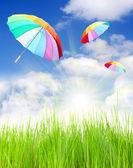 Rainbow umbrellas — Stock Photo
