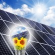 Lamp bulb with solar panels — Stock Photo #33801329