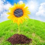 Solar panels on the sunflower — Stock Photo #33801405