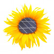 Sunflower with solar panel. Environmental concept — Stock Photo