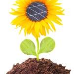 Solar panels on the sunflower — Stock Photo #33801715