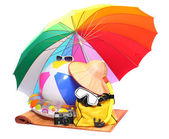 UV protection equipment, sun lotion and floating water toys — Stock Photo