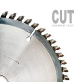 The circular saw — Stock Photo