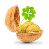 Golden coins and a four leaf clover in the nutshell. The luck concept. — Stock Photo