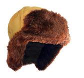 Kürk şapka için kış hava. — Stok fotoğraf