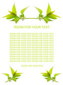 Four cutted stems of tea tree — Stock Photo