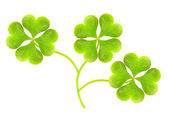 Symbols of a St Patrick day — Stock Photo