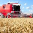 Combine harvesting wheat. — Stock Photo #34675091