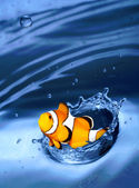 Funny image of jumping clown fish. — Stock Photo