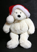 White teddy bear — Stock Photo