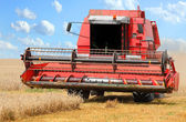 Combine harvesting wheat. — Stock Photo