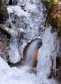 Frozen spring — Stock Photo