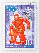 Ice-hockey goalkeeper — Stock Photo