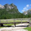 Footbridge in Dolomiti Mountains — Stock Photo #35431455