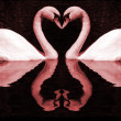 Red Swan's Hearts — Stock Photo #35439987