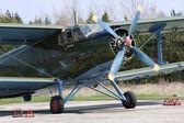 Historic plane paradropper Antonov An-2 in airport Line — Stock Photo
