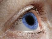 Blauwe menselijk oog — Stockfoto