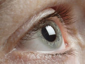 Gray human eye — Stockfoto